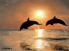 Tramonto con delfini - Michele De Flaviis - Digital Art