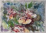 fiori di cappero - fiorella betti - Acquerello - 180€
