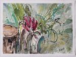ciclamino nel bosco - fiorella betti - Acquerello - 150€
