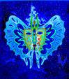 Farfalla Notturna - Costantino Canonico - Olio - 1500€