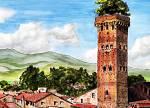 Torre Guinigi a Lucca - silvia diana - china e acquerello - 200 €