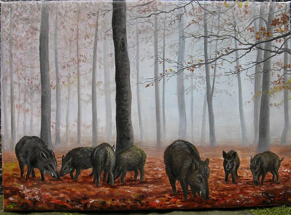 Foresta del Teso- Cinghiali nella bruma - silvia diana - Olio - 600 €