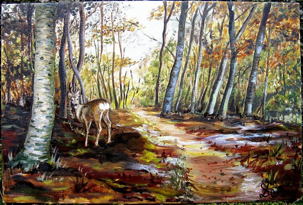 Foresta del Teso - Capriolo - silvia diana - Olio - 350 €
