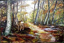 Foresta del Teso - Capriolo - silvia diana - Olio - 350€