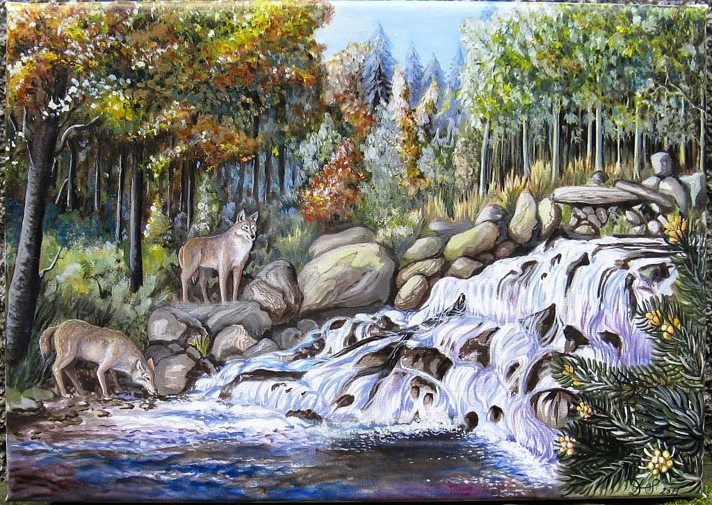 Foresta del Teso-Incontri del primo mattino - silvia diana - Olio - 600 €