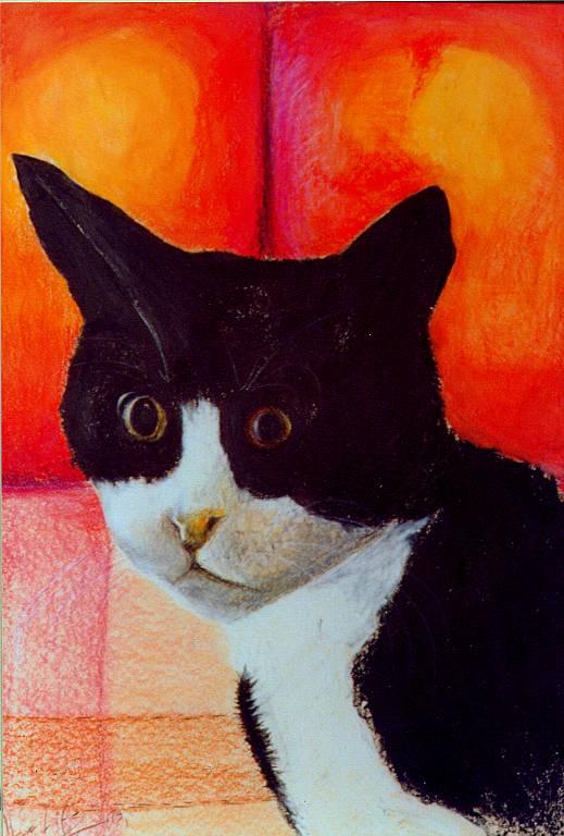 Il gatto - daniele Rallo  - Pastelli -  €