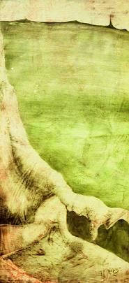 orizzonte in verde - daniele Rallo  - mista