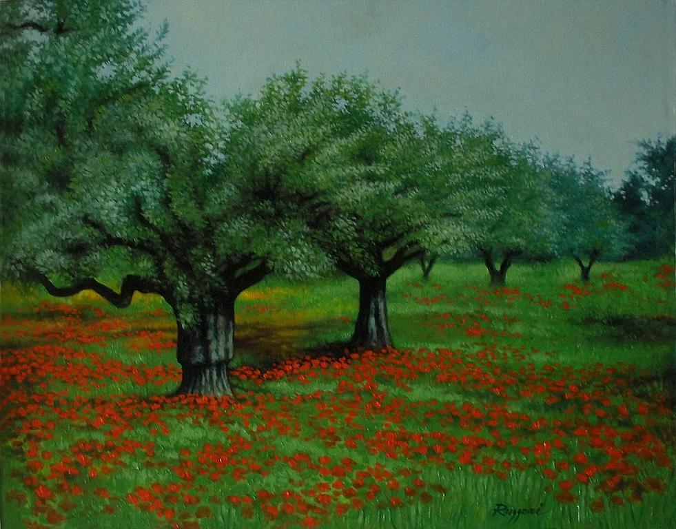 Campo con ulivi e papaveri - Salvatore Ruggeri - Olio