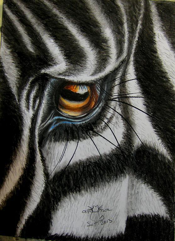 Zebra - anna casu - Carboncino - 100 €