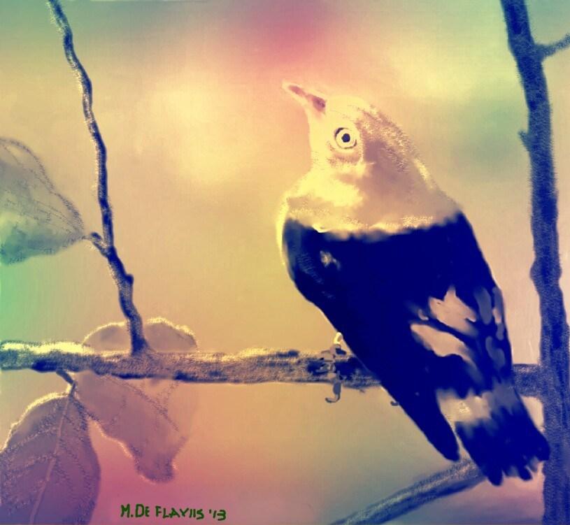 L'uccellino canterino - Michele De Flaviis - Digital Art - 70 €