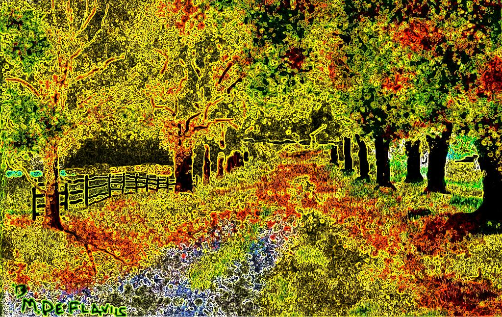 I colori dell'autunno - Michele De Flaviis - Digital Art