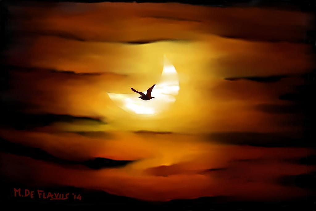 La luna e il gabbiano - Michele De Flaviis - Digital Art - 70 €
