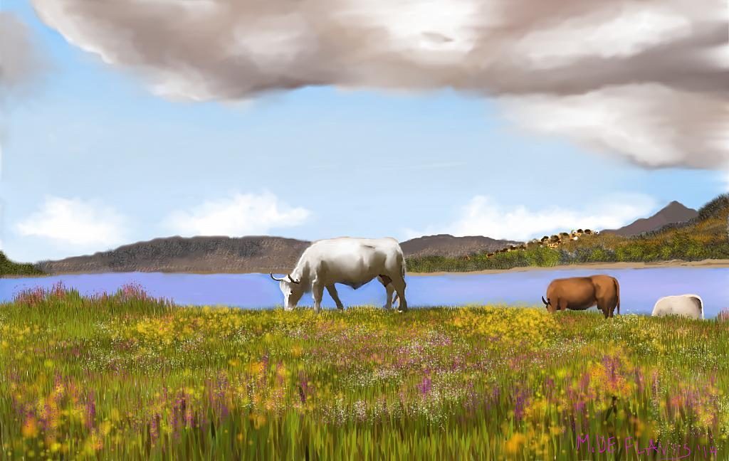 Mucche al pascolo - Michele De Flaviis - Digital Art