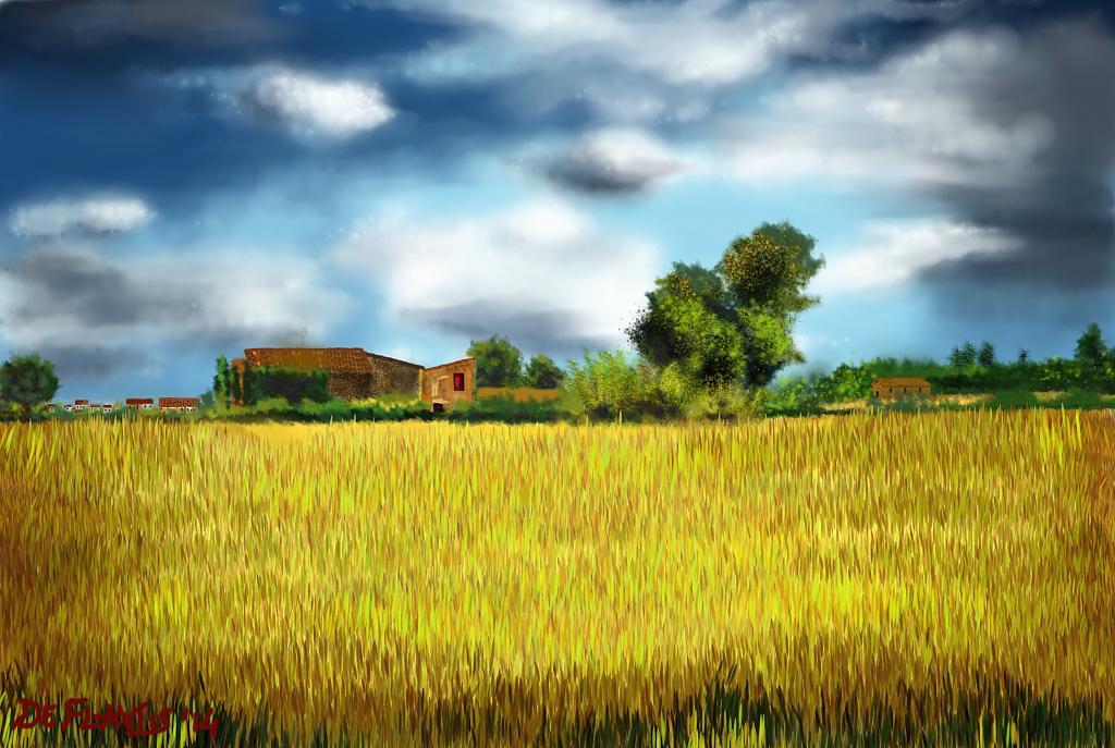 Campo di grano - Michele De Flaviis - Digital Art - 90 €