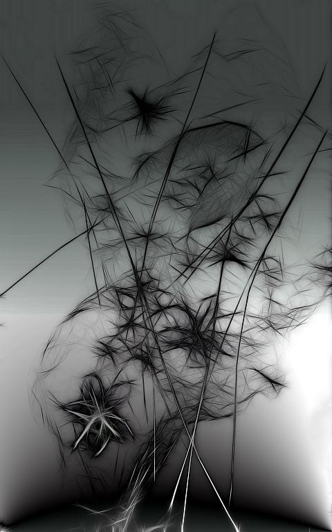 Flowers - Massimo Di Stefano - Digital Art