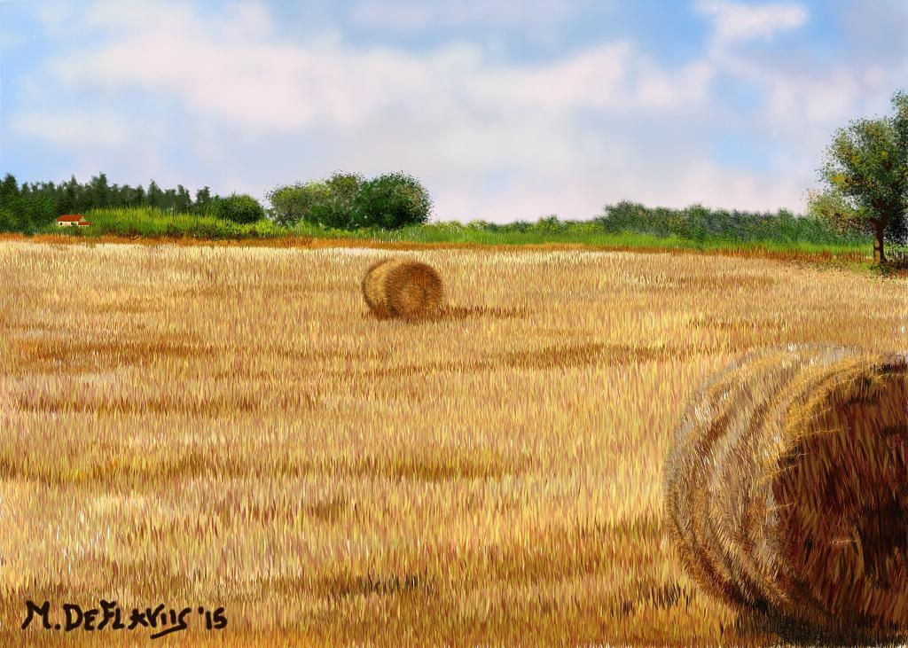 Campo di stoppie - Michele De Flaviis - Digital Art