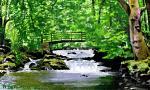 Ponte sul torrente in piena - Michele De Flaviis - Digital Art