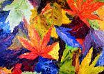 Tripudio di colori nel mio giardino - anna casu - Olio
