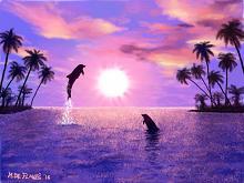 Delfini! - Michele De Flaviis - Digital Art