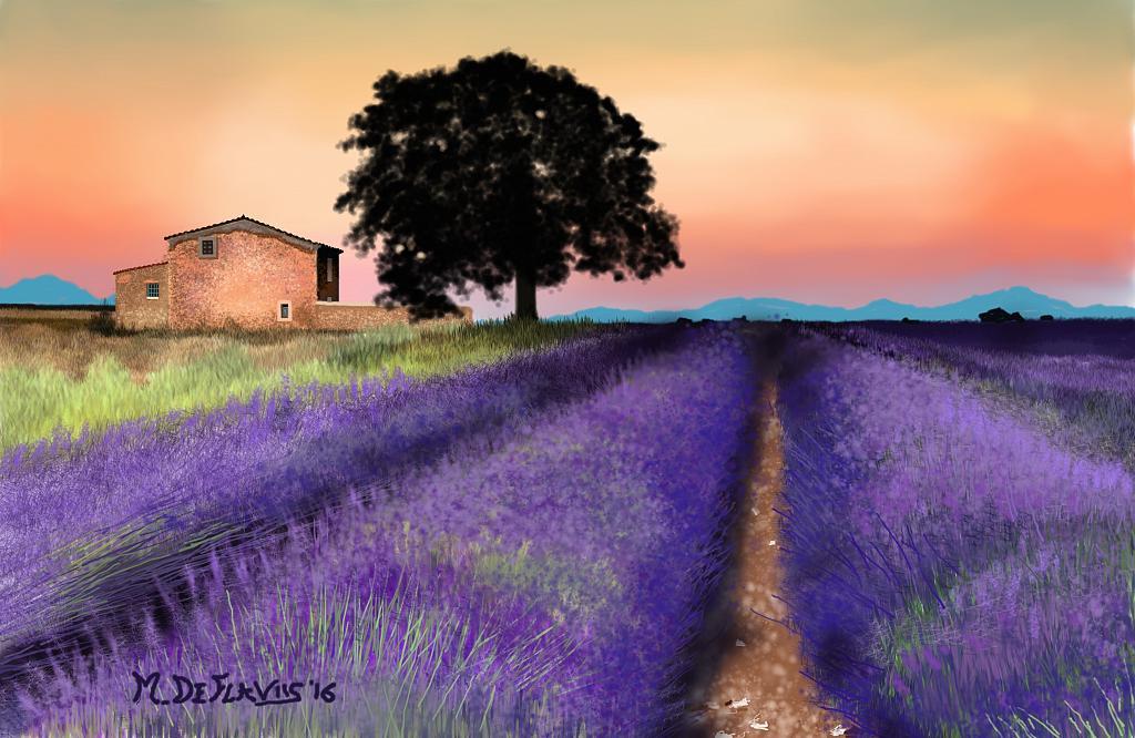 Campi di lavanda in Valensole(Provenza) - Michele De Flaviis - Digital Art - 100 €