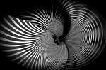 Onde gravitazionali 2  - Massimo Di Stefano - Digital Art