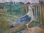 Uccello gabbiano ai Fori Imperiali, Roma  - Ruzanna Scaglione Khalatyan - Acquerello - 65€