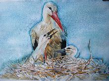 Gli uccelli ( Il nido della cicogna )  - Ruzanna Scaglione Khalatyan - Acquerello - 60€