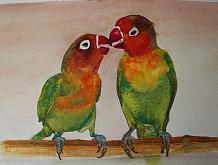 Uccelli pappagalli - Ruzanna Scaglione Khalatyan - Acquerello - 70€
