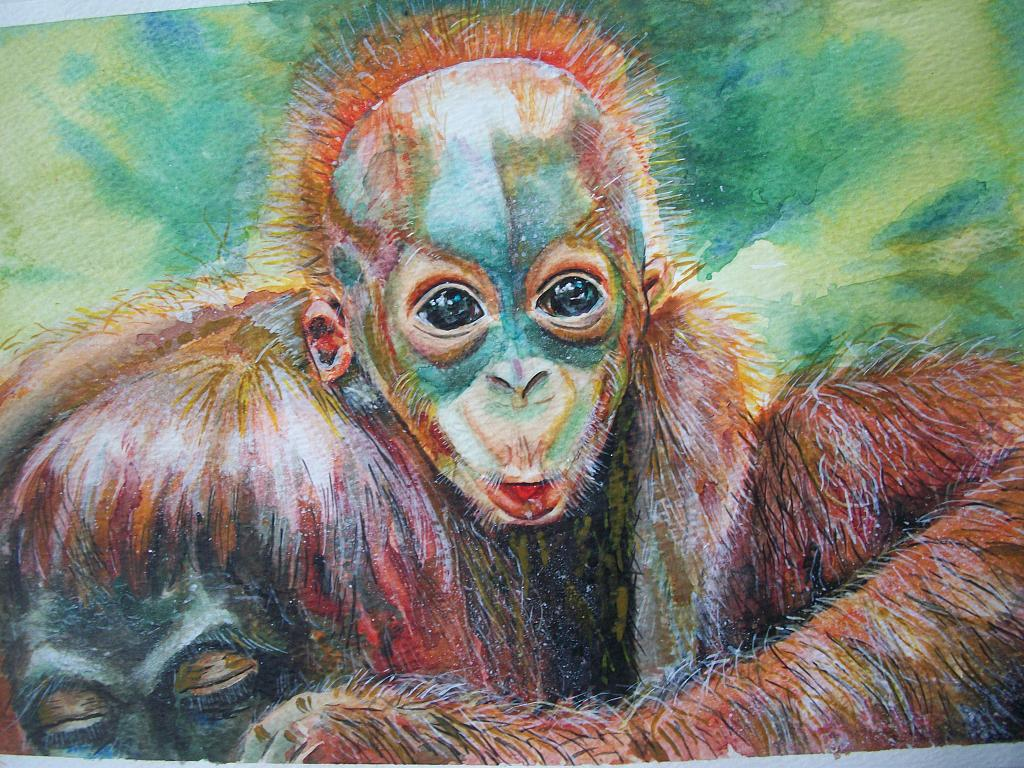 cucciolo d'orango, scimmia  - Ruzanna Scaglione Khalatyan - acquerello acrilico  - 65 €