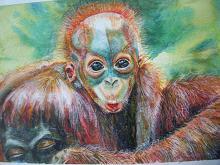 cucciolo d'orango, scimmia  - Ruzanna Scaglione Khalatyan - acquerello acrilico  - 65€