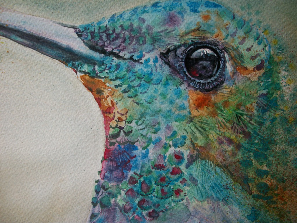 Uccello Colibrì  - Ruzanna Scaglione Khalatyan - Acquerello