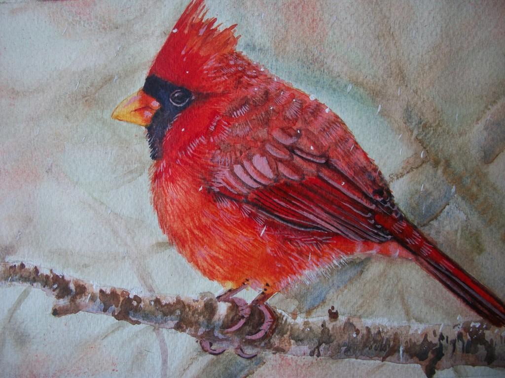 Uccello Cardinale rosso - Ruzanna Scaglione Khalatyan - Acquerello