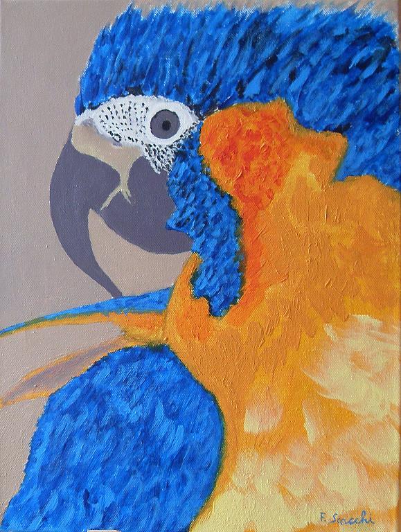 pappagallo punck - franco scacchi - Acrilico - 150 €