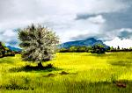 Campagna di Orosei - Michele De Flaviis - Digital Art