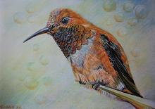Uccello Colibrì  - Ruzanna Scaglione Khalatyan - Pastelli