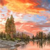 I colori della natura - Michele De Flaviis - Digital Art