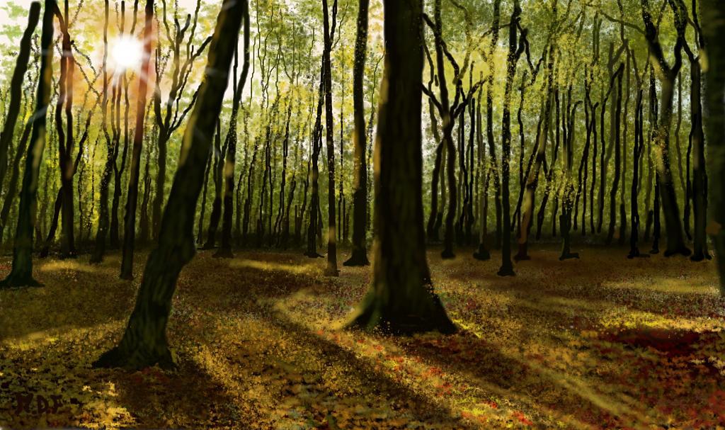Tappeto di foglie caduche - Michele De Flaviis - Digital Art - 300 €