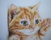 cucciolo del gatto - Ruzanna Scaglione Khalatyan - Pastelli