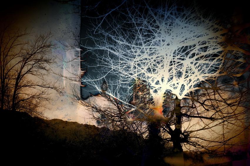 Il profumo della malinconia  - Massimo Di Stefano - Digital Art - 150 €
