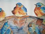 uccelli  - Ruzanna Scaglione Khalatyan - Acquerello - 110€