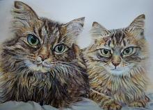 Gatti, madre con figlio  - Ruzanna Scaglione Khalatyan - matite acquerellabili e acrilico