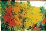 I colori dell'autunno - mario fanconi - Olio - 800 €