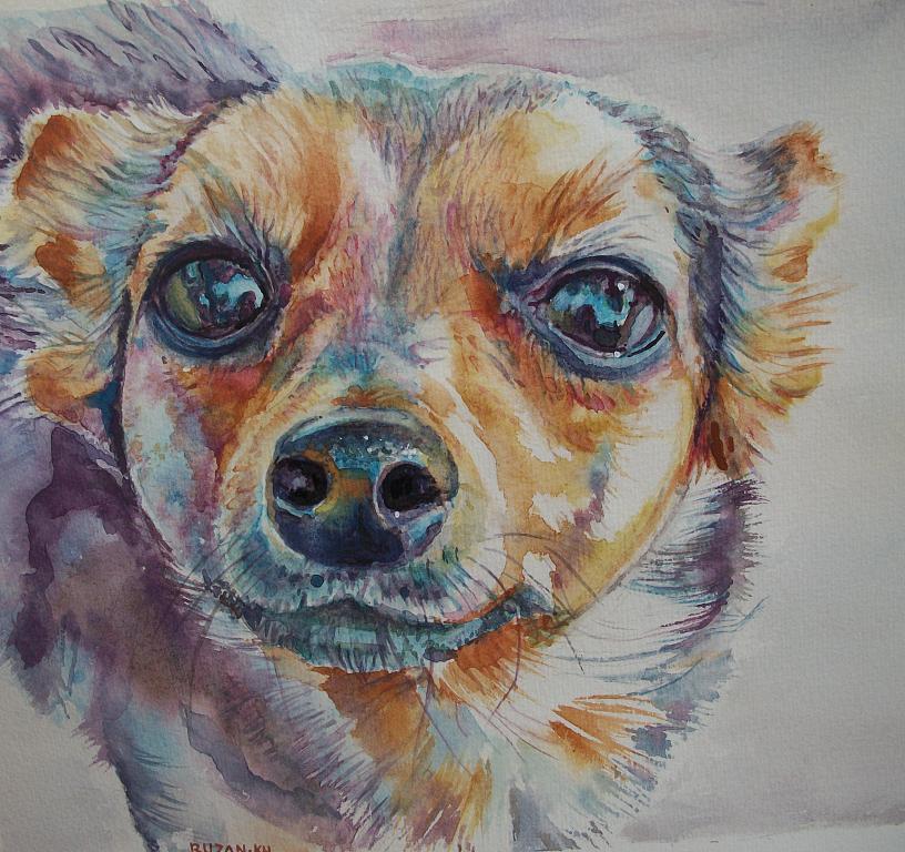 Ritratto di un cane - Ruzanna Scaglione Khalatyan - Acquerello - 65 €