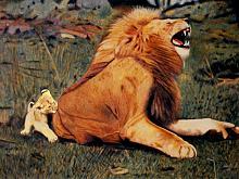 Il Re della foresta  - Giovanni Crispino - Acrilico - 135€