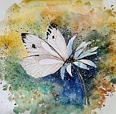 Di fiore in fiore - anna casu - Acquerello