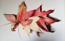 Autunno in fiore - anna casu - Carboncino