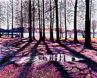 Colori  tra le ombre - GRECO Bruno - Acrilico
