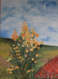 primavera - Santina Mordà - Olio - 150,00€