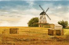 Mulino a vento polacco - Michele De Flaviis - Digital Art