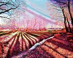 Con i colori di un sogno - GRECO Bruno - Acrilico